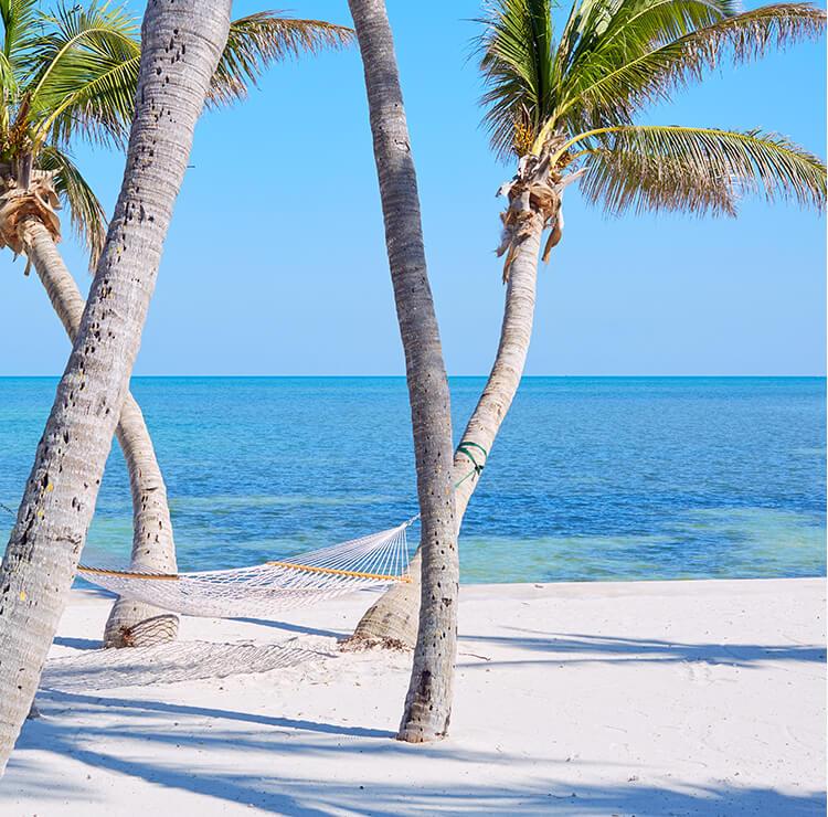 Resort 365 Blog